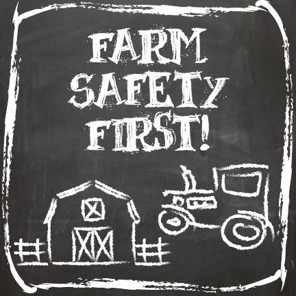 Image result for kids farm safety