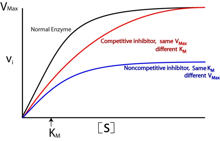 competitive inhibition - Google Search