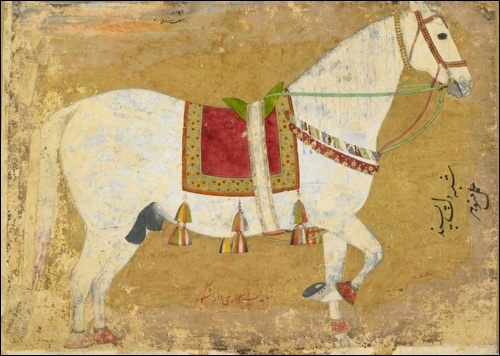 A beautiful painting of Dara Shikoh's gray horse. Dara Shikoh was an Imperial Prince and the eldest son of Mughal Emperor Shah Jahan, but was defeated in his bid for the imperial throne by his younger brother Prince Muhiuddin (who became Emperor Auragzeb). As featured in the British Library exhibition, Mughal India: Art, Culture and Empire.