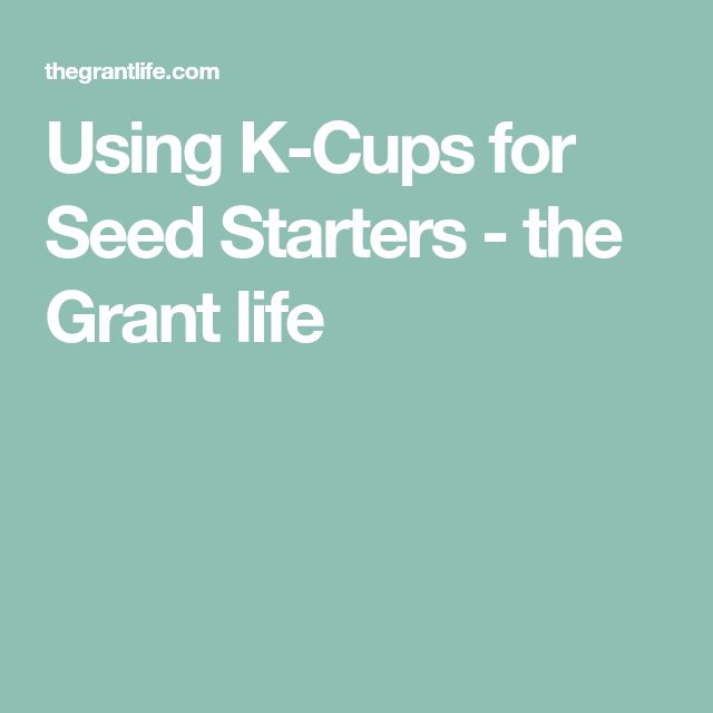 Using K-Cups for Seed Starters - the Grant life