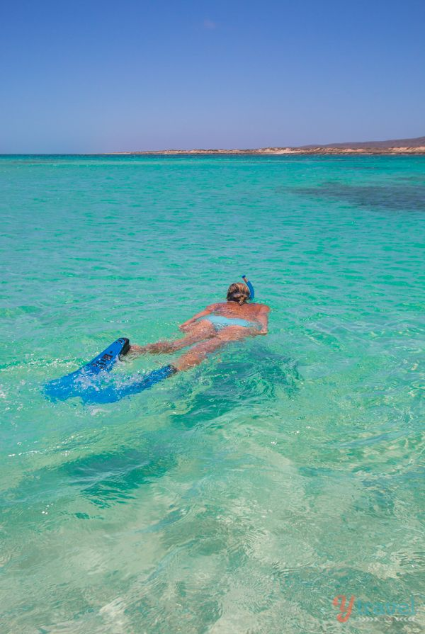 Snorkeling at Ningaloo Reef in Exmouth, Western Australia - add to your bucket list