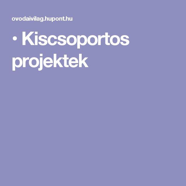 • Kiscsoportos projektek