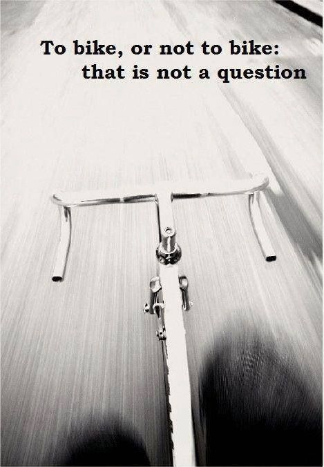 25 best cycling quotes on pinterest cycling motivation