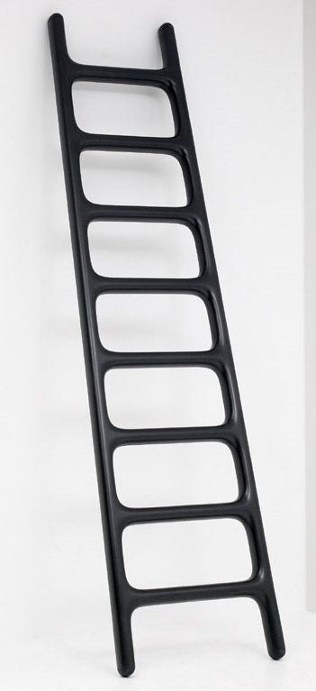 what could you do with a super light, super strong Carbon Fiber Ladder?