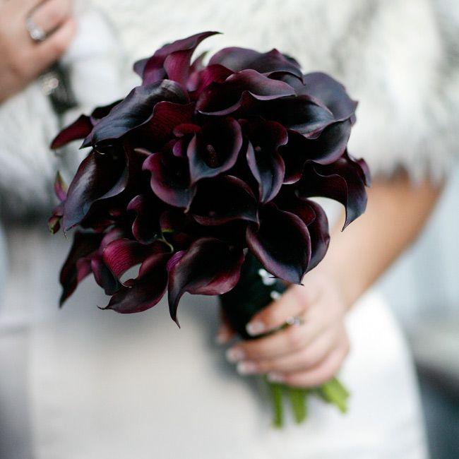 56 best Flowers images on Pinterest | Beautiful flowers, Pretty ...