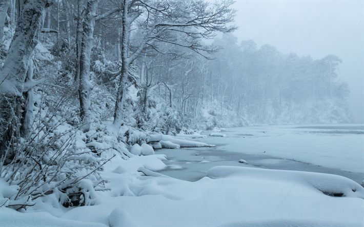 Download wallpapers Lago del Toro, winter, snow, frozen lake, winter landscape, Huerquehue National Park, Chile
