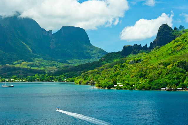 イルカとキッス!手付かずの自然が残る「モーレア島」
