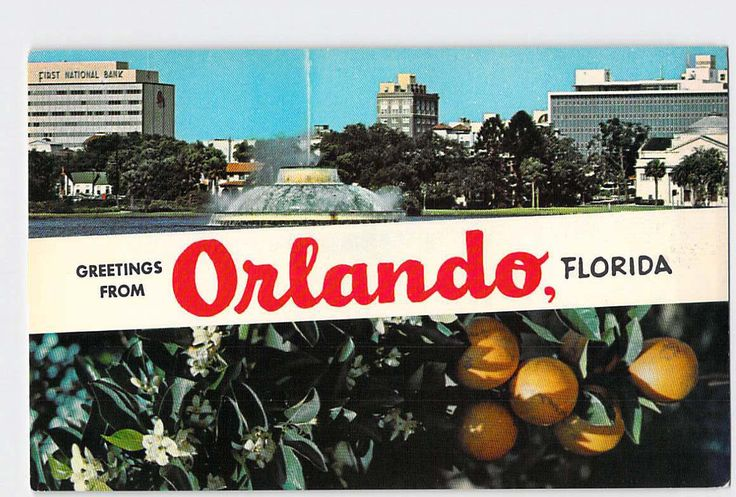 Orlando Florida, Fl, greetings from Orlando Florida, Vintage Postcard