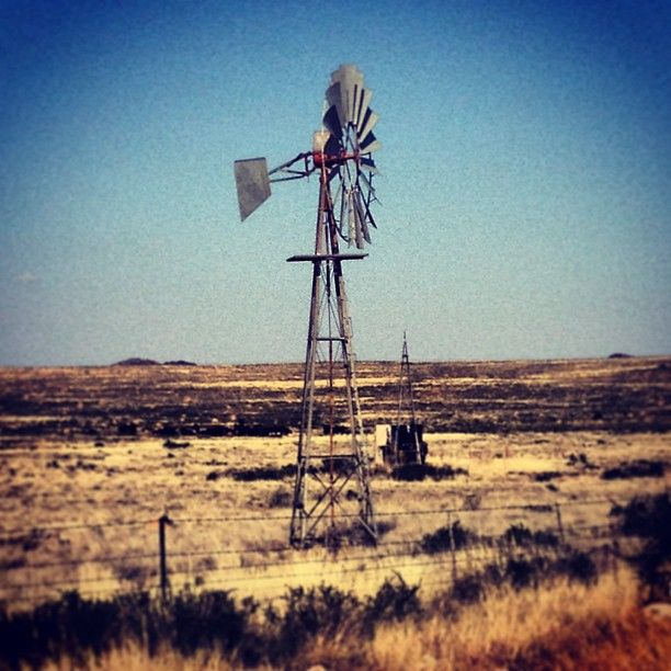 Windmills - Oh how pretty the Karoo landscape is! Photo by nielvandev