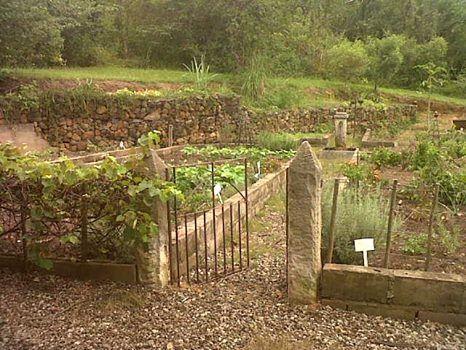 Summerfields garden