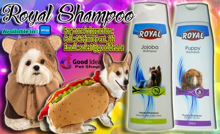 Royal Shampoos are a great value for pets and their owners. Avail Now for affordable prices. For more information: Call:042677789 loc 112 Email:sales7@goodidea.ae ◘ We are open for those who have petshops,pet store and Good samaritans helping those stray with promotional offer ♥ Also Available in : SOUQ.COM #Puppy #Jojoba #PetCare #DogOwners #DogLovers #Dogdubai