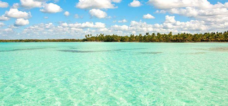 Saona Island Dominican Republic natural pool excursion from Punta Cana