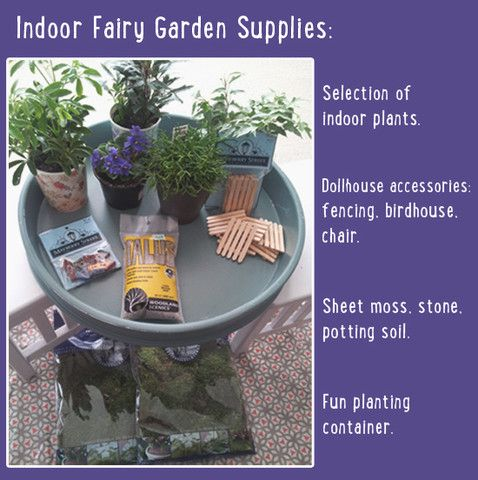 Plant An Indoor Fairy Garden. – DIY - A Little Lair®