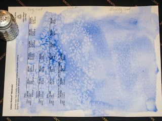 How to use salt to create texture and depict numerous effects in watercolor painting!