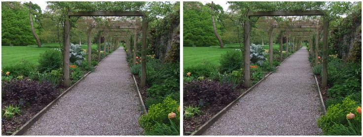 Blarney Castle gardens covered avenue 3D 2016