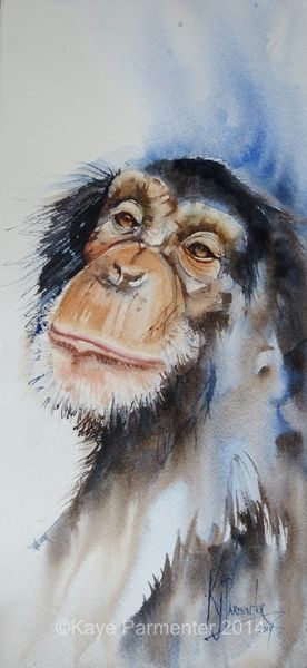 chimp_painting_watercolour_1 by Kaye Parmenter