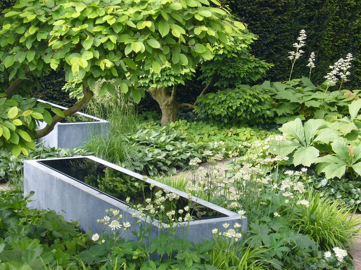 Schitterende combinatie van schaduwplanten: Hakonechloa macra (Japans berggras), Deschampsia cespitosa (Gewone Smele), Astrantia, Asarum (Mansoor) (Chelsea 2008, Tom Stuart-Smith)