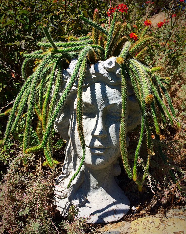 554 best images about head planters on pinterest gardens ceramics and medusa head - Medusa head planter ...