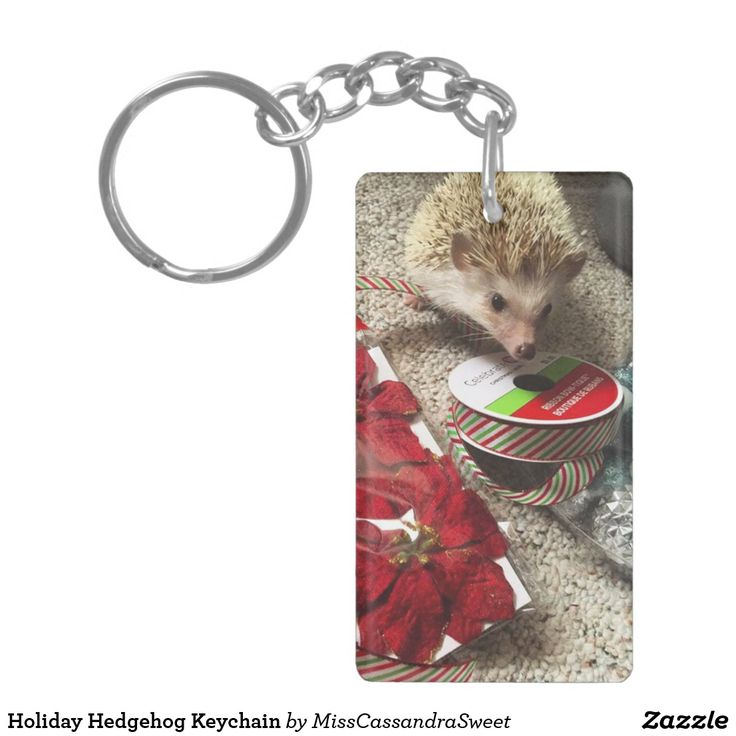 Holiday Hedgehog Keychain