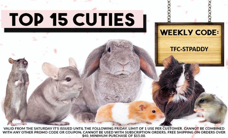 Pin On Top 15 Cuties