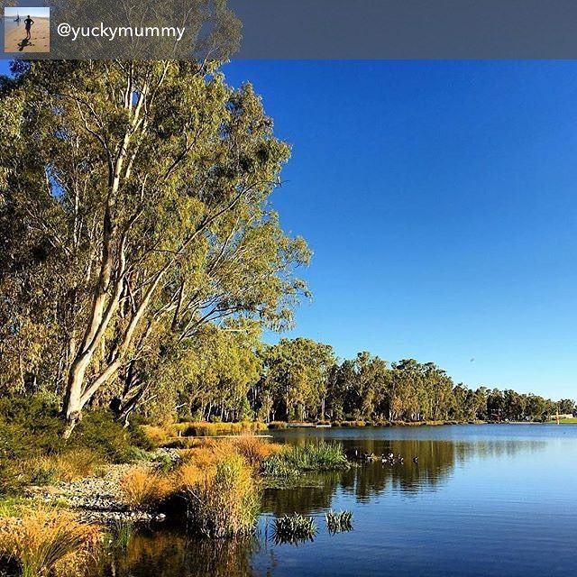 Victoria Park Lake in Shepparton was looking picture perfect over the weekend. Thanks for sharing @yuckymummy #visitheartofvic