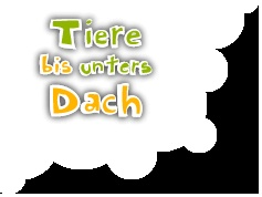 German Children's Television Show -- We loved this sweet program and practiced a lot of German.