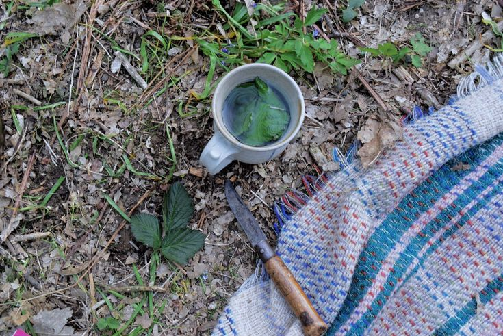 How To: Foraged Teas | Misadventures Mag http://misadventuresmag.com/how-to-forage-teas/