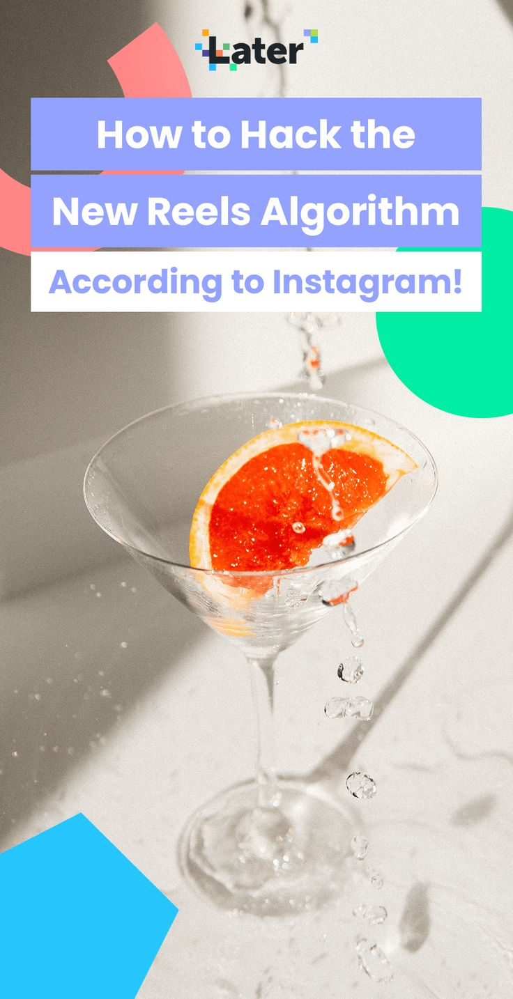 How to hack the instagram reels algorithm later blog in