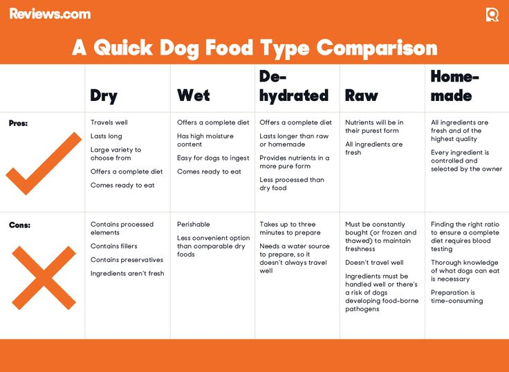 Best Dog Food Reviews and Ratings of 2016 - Reviews.com