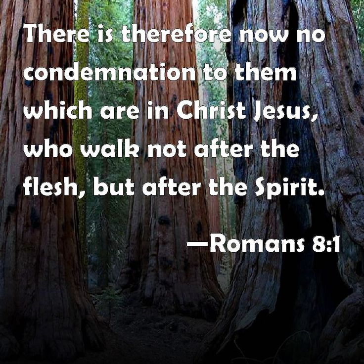 Romans 8:1  King James Version (KJV)  8 There is therefore now no condemnation to them which are in Christ Jesus, who walk not after the flesh, but after the Spirit.