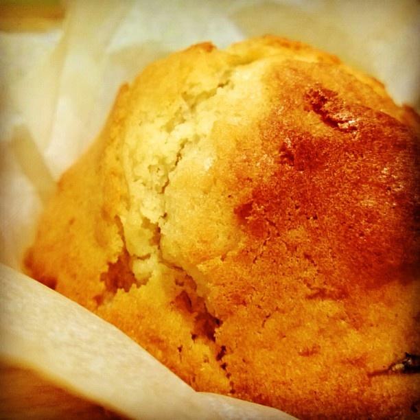 #muffin al #panettone #igersfood #food #igers #igersitalia #igersmilano #istafood