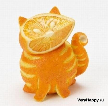 orange cat )))