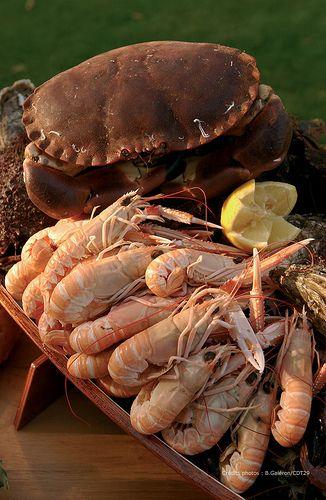 Fruits de mer | Flickr: partage de photos! (Finistère Tourisme)