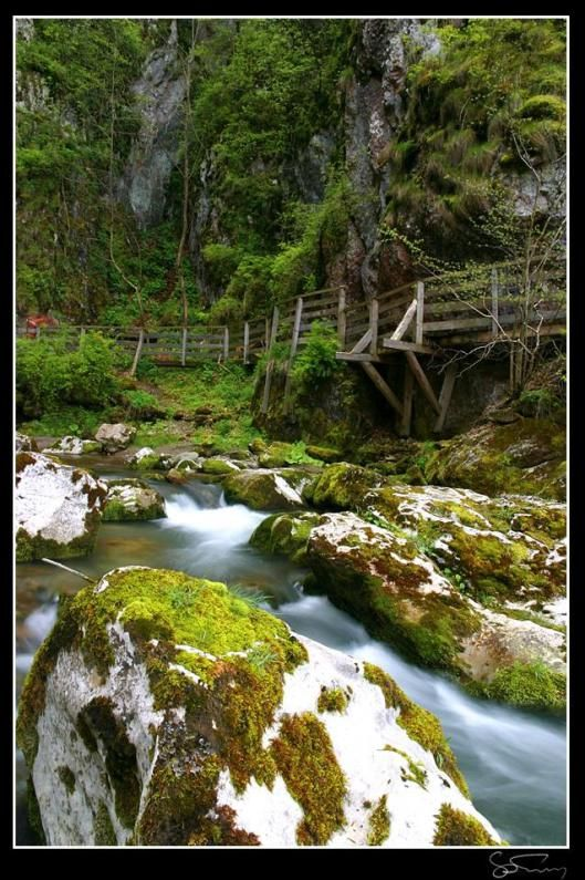 Romania Huda lui Papara bridge cave Trascau Apuseni mountains Carpathians eastern europe caves
