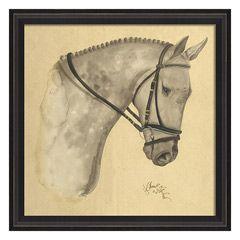 Horse Dappled Gray Framed Art SC98351