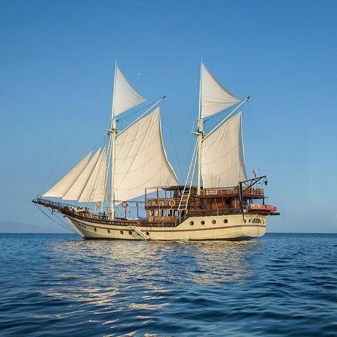 Enjoy the beauty of komodo national park with Phinisi Cruises . Next luxury Sailing Trip:  11-14 August (Full) 09-12 Sept 30-03 Oct  09-11 Dec  29-01 Jan 2017 . Mail us for premium komodo Sailing Trip at Info@kakabantrip.com . . #luxurytrip #luxuryphinisi  #kakabantrip #premiumkakabantrip #sailingkomodo #komodonationalpark
