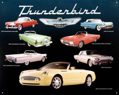 My parents got me a Ford Thunderbird when I was 15 to be my first car  sc 1 st  Pinterest & 75 best T bird images on Pinterest | Ford thunderbird Vintage ... markmcfarlin.com