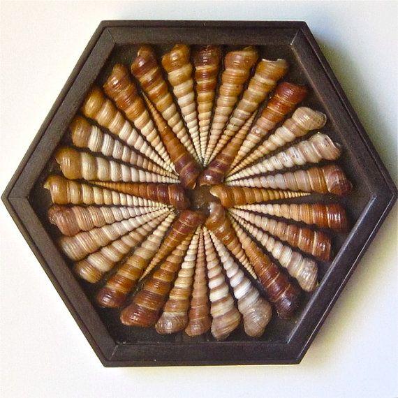"""Un arte mixta collage seashell, ensamblaje, escultura de la pared, una variación única de """"San Valentín de marinero"""" combina la madera y conchas"""