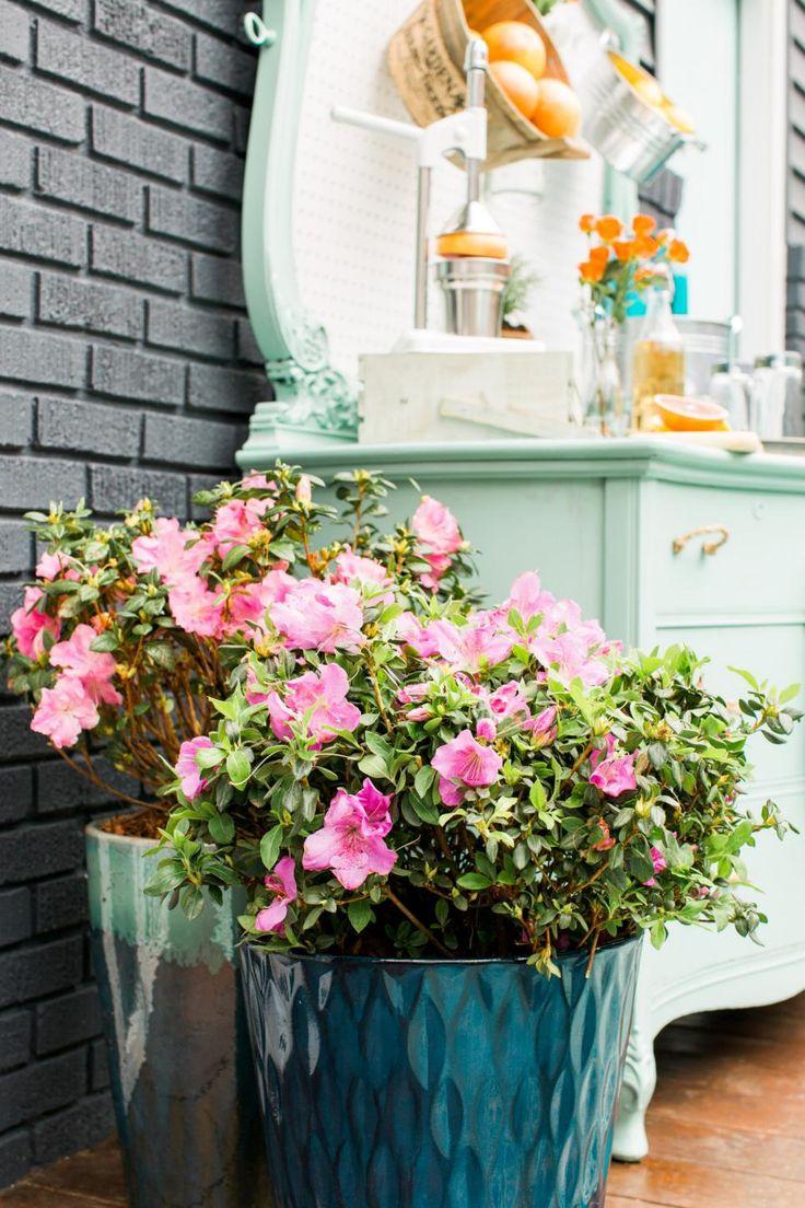 405 Best Outdoor Living Ideas Images On Pinterest Decks