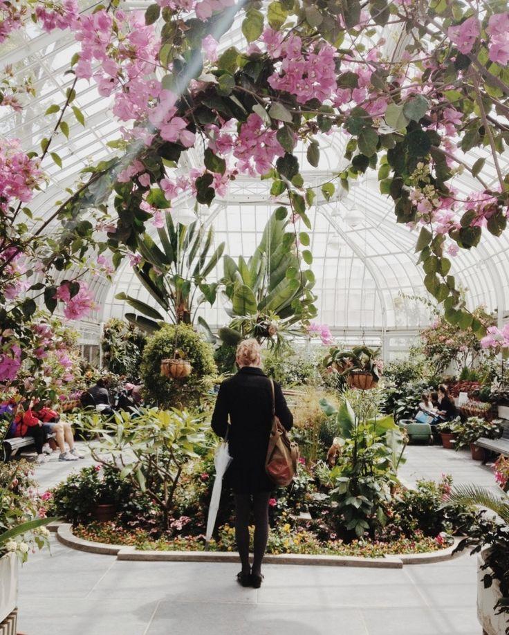 Greenhouse / Montreal, QC