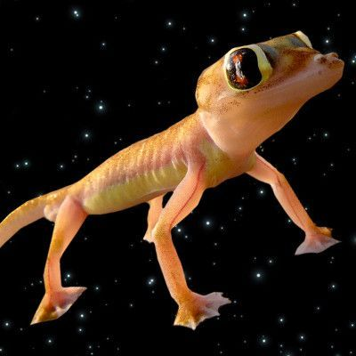 A Tribute to the Dead Space Sex Geckos