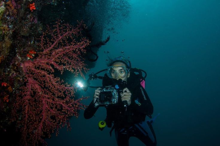 Meet @marischkaprue  an avid diver and freediver. We are now in Sabah for a dry trip.  #Lembata