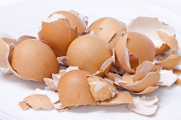 ¡No tires las cáscaras de huevo nunca más! Te contamos para qué sirven