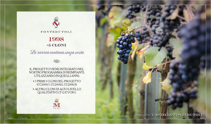 La creazione del Castello di Fonterutoli poggia sulla selezione più accurata dei migliori cloni. @marchesimazzei #fonterutoli #marchesimazzei #wine #tuscany