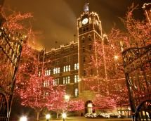 Where to See the Best Christmas Light Displays in St. Louis: Brewery Lights