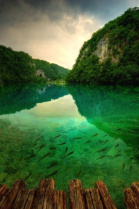 Plitvice Lakes, Croatia. how does one capture a picture like this?!