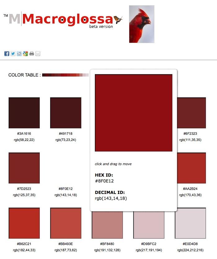 25+ parasta ideaa Pinterestissä Cores em hexadecimal Cores rgb - html color code chart