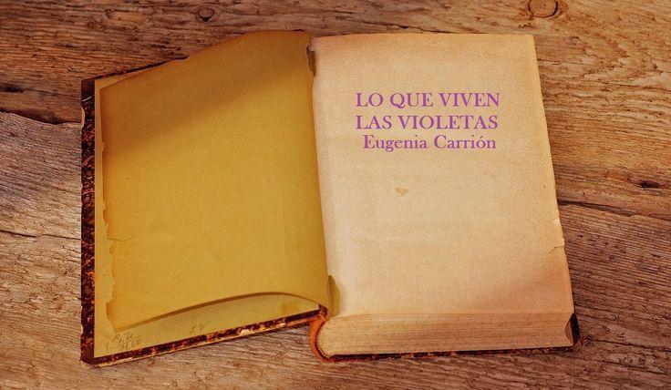 Sinopsis de Diario de una mujer cansada que puede leer en la web parafantastica.com