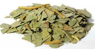 Eucalyptus has long been used in aboriginal medicine. It grows primarily in Australia and Tasmania and the scent is very recognizable. Eucalyptus has many medicinal benefits and is used in a wide range of products. Eucalyptus | Herbal Medicine | Natural Remedies www.theancientsage.com