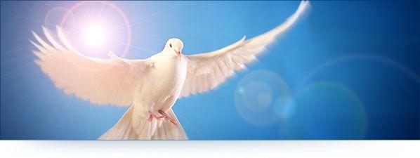 Heilige Geest, gaven van de Geest, Geest van God, kracht van de Geest, Bijbels, charismatisch